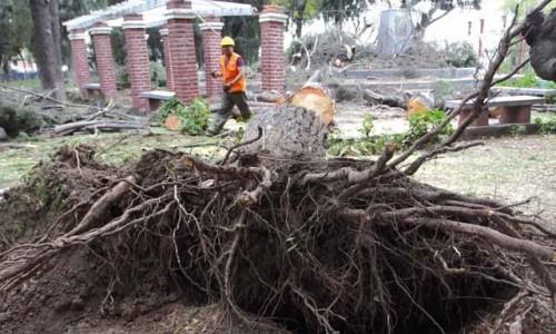 Es probable que la población sea afectada con la misma intensidad que la última vez que se registraron vientos de hasta 65 kilómetros por hora.