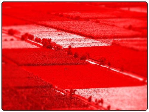 sobre plan de crecimiento urbano de Arequipa