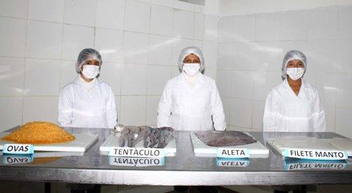 exportan pescado