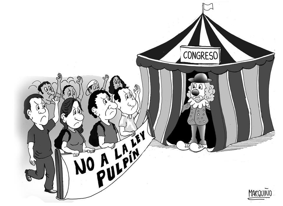 ley-pulpin-y-congreso