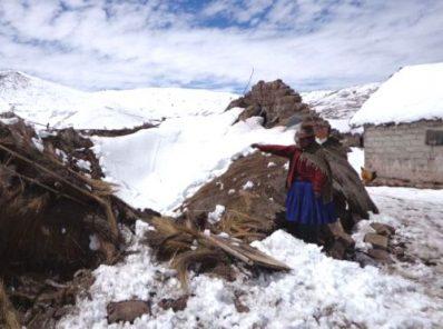Organizan campaña de solidaridad para los afectados por heladas y nevadas en Caylloma