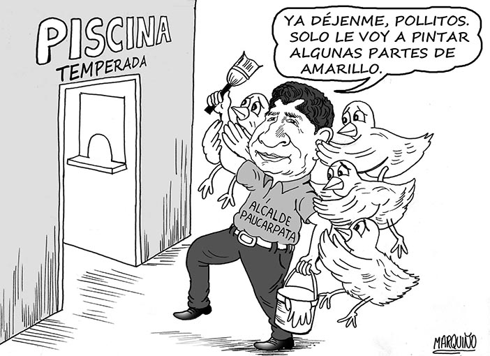 el pollito-caricatura
