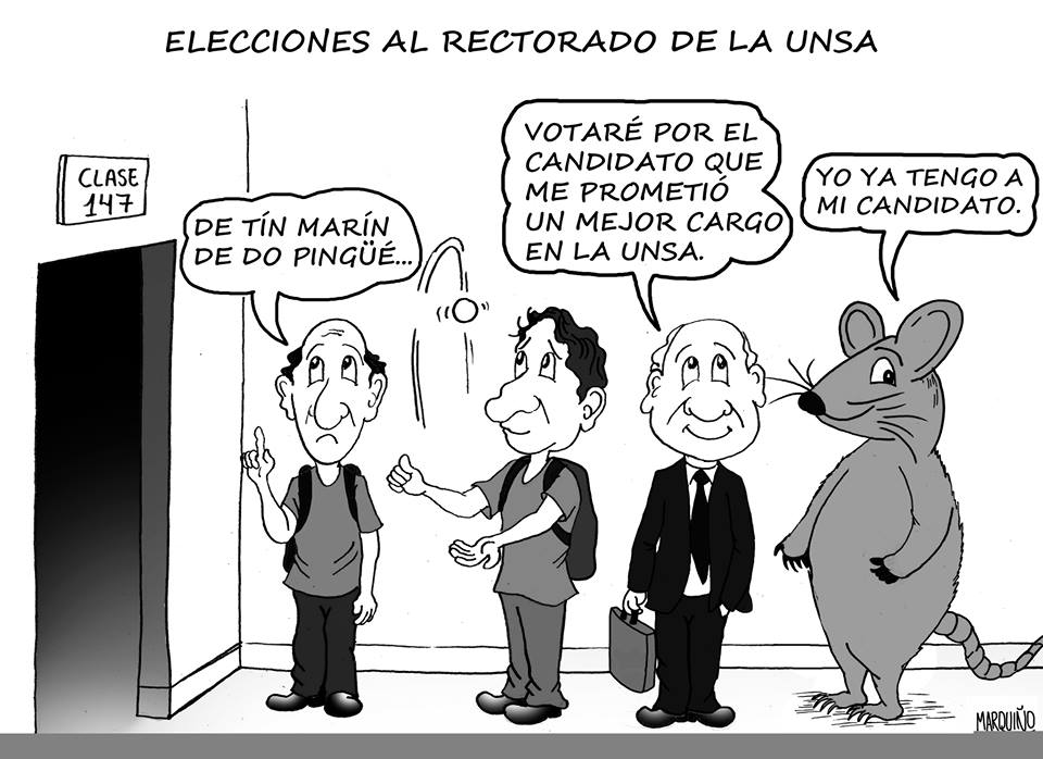 elecciones UNSA