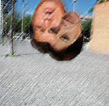 Atraccion al suelo