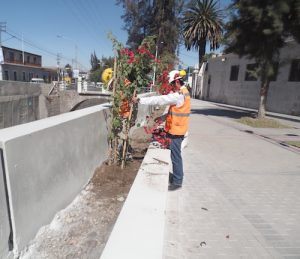 Remodelación de barrio San Lázaro con un 90% de avance