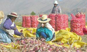 Potencial económico de Arequipa será analizado en evento del BCR
