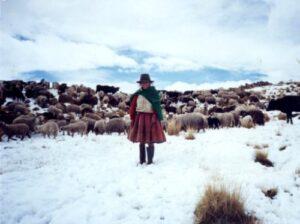 Nuevo descenso de temperaturas soportarán zonas alto andinas de Arequipa en esta semana