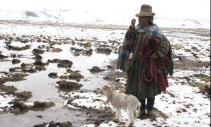 Heladas continuarán en la Sierra Sur hasta el 2 de agosto anuncia Senamhi