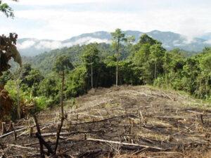 Cambio climático: una gran amenaza global