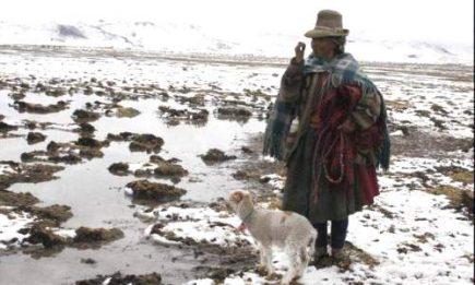 Entregan productos vencidos a damnificados de friaje en Arequipa