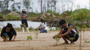 """UCSM promueve reforestación mediante el programa """"Arequipa Ciudad Verde"""""""