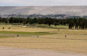 Conflicto entre Arequipa y Moquegua por el agua no tiene fin