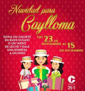 Centro de Idiomas de la UNSA inicia campaña para niños de Caylloma