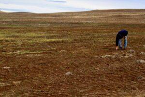 Conflicto por el agua con Moquegua condena a la sequía al valle de Tambo