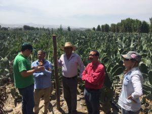 Agrobanco dispuso apoyo a clientes afectados por lluvias y huaicos