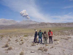 Más de 22 mil alpacas están en peligro por erupción del volcán Sabancaya