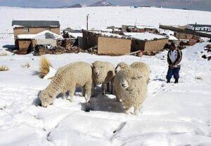 Temperaturas descenderán hasta diez grados bajo cero en la región