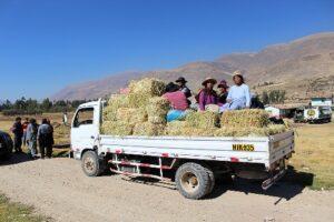 Servidor compró y distribuyó 81 mil pacas de heno sin permiso del GRA