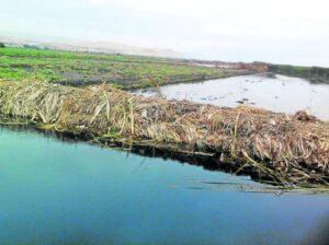 Denuncian destrucción de la emblemática Laguna de Pucchún