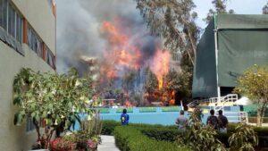 FOTOS y VIDEO. Incendio en Club Internacional quemó autos y vegetación
