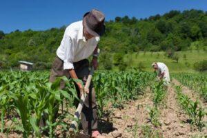 Piden entregar banco de datos para planificar cultivos