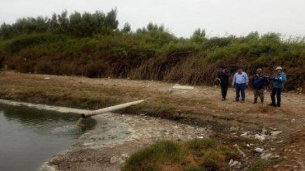 Más de 200 hectáreas de cultivo se estropean por fuga de aguas servidas