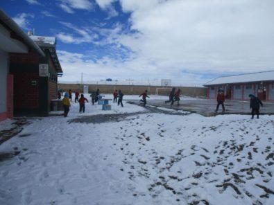 Un total de 19 distritos en Caylloma han sido afectados por la caída de nieve