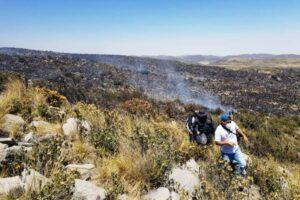 Incendios e invasiones ponen en riesgo más de 200 manantiales en Arequipa