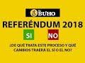 Referéndum 2018: ¿De qué trata este proceso y qué cambios traerá el SÍ o el NO?
