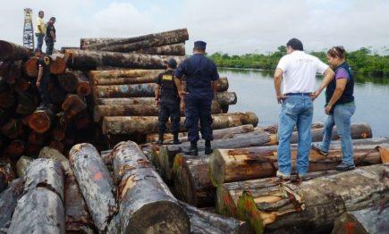 TLC Perú-EE.UU: Si la naturaleza no importa, quizás sí el bolsillo
