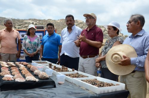 restos arqueológicos en Lambayeque