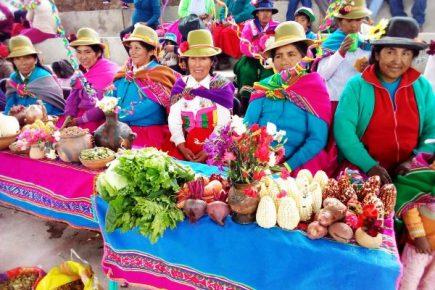 Agricultores de Arequipa ganan concurso de emprendimientos rurales y consiguen fondos