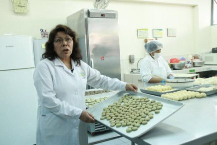 Elaboran galletas con espirulina para combatir la anemia