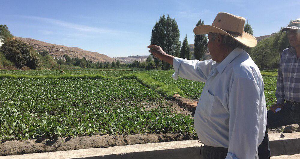 Arequipa La Enlozada Cerro Verde Rio Chili agricultura