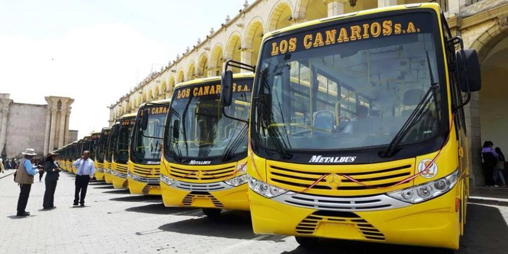 arequipa nuevos buses sit