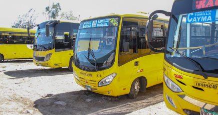 SIT: Transportistas podrían perder contratos si no presentan documentos en cinco semanas