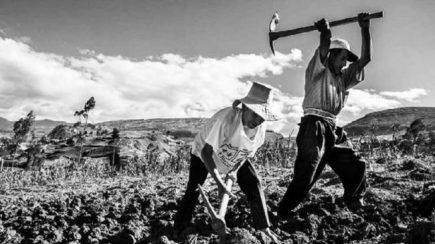 Reforma Agraria, cincuenta años y algo más…por venir