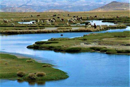 ¿No conoces la reserva de Salinas y Aguada Blanca? Aquí los detalles para visitarla