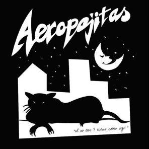 Aeropajitas en Arequipa: concierto de punk-rock