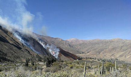 ACT. Incendio forestal en Andagua, valle de los volcanes, quemó 2 mil hectáreas de pastizal