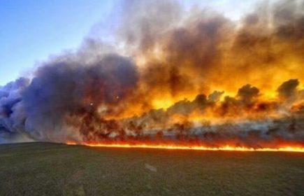 EMERGENCIA: La Amazonía se incendia