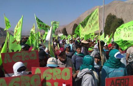 El MEM debe resolver cuatro demandas contra Southern para reactivar proyecto Tía María