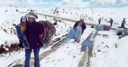 Arequipa: 33 distritos declarados en emergencia por bajas temperaturas