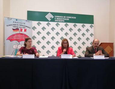Alianza entre el sector público y privado para el desarrollo económico local