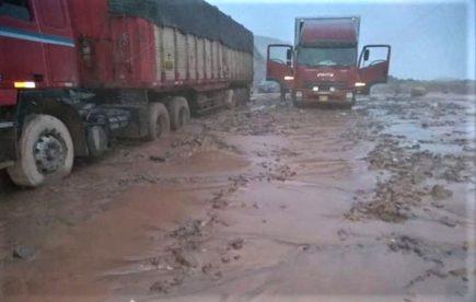 Arequipa: Más de 250 viviendas afectadas en Camaná tras lluvias