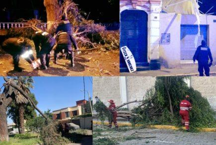 Arequipa: Intenso ventarrón provoca cortes de electricidad y destrozos
