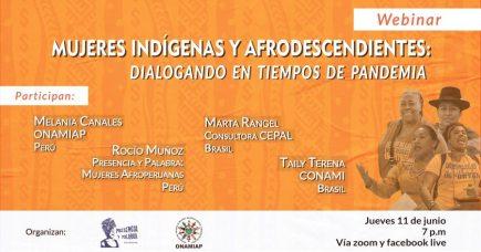 Mujeres indígenas y afrodescendientes: dialogando en tiempos de pandemia