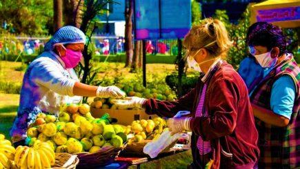 Arequipa: Aquí 12 mercados itinerantes en 7 distritos del 2 al 6 de junio