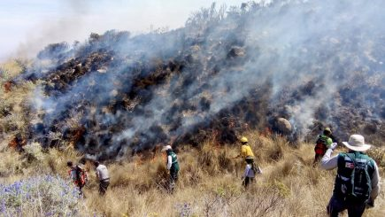 Arequipa: incendio forestal en faldas del Misti consumió 50 hectáreas de pastizales