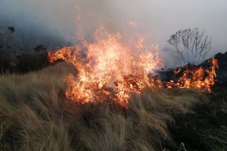 Cusco incendio